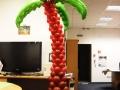 Пальма з повітряних кульок